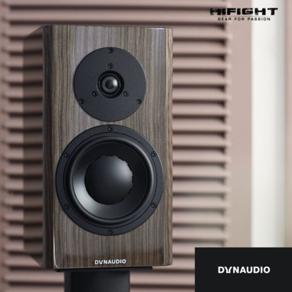 dynaudio special forty hifight 2020 -4